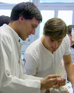 health sciences and technology